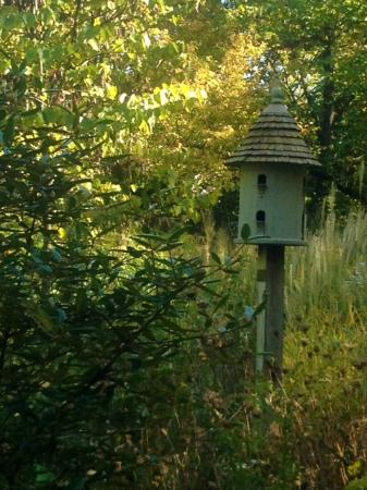 Fernwood Botanical Garden and Nature Preserve: Birdhouse in the garden