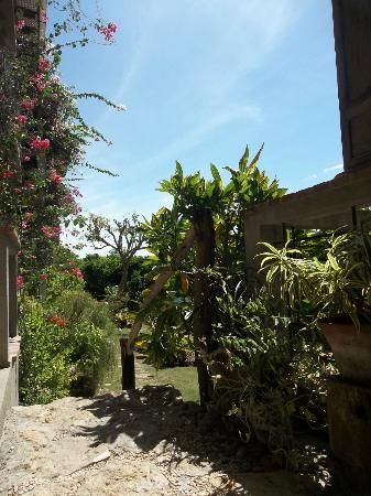 Amarela Resort: Path to the garden