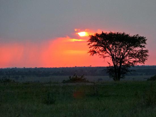 Olakira Camp, Asilia Africa: A day ends on the Serengeti Plain