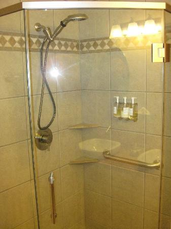 Twisp River Suites: Shower stall in double queen suite