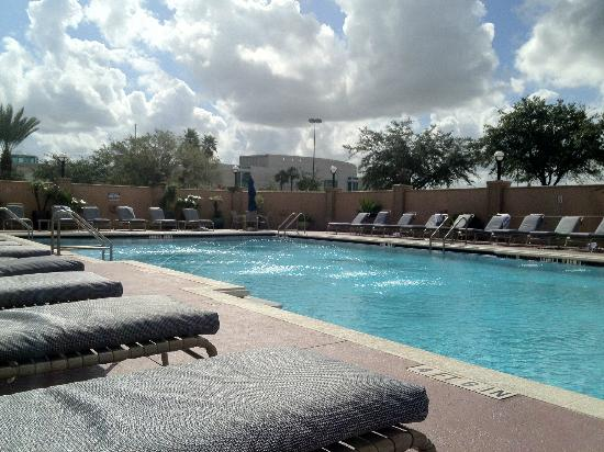 The Florida Hotel and Conference Center: Plenty of sun loungers and clean towels