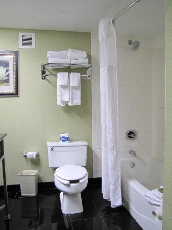 The Florida Hotel & Conference Center: Clean bathroom