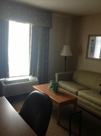 Homewood Suites by Hilton Hartford South-Glastonbury: Living area