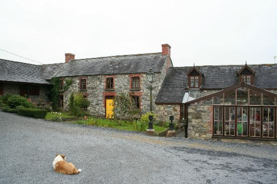 Lawcus Farm Guest House: Lawcus Farm, a very special B&B