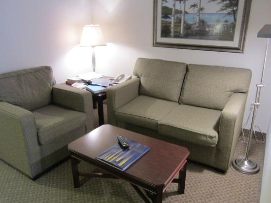 Ann Arbor Regent Hotel & Suites : living area across from desk