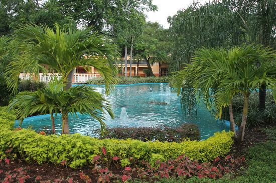 Wyndham Palm-Aire: The small pond