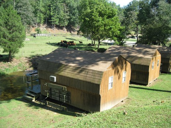 Morganton, Carolina del Norte: Cabin Rental