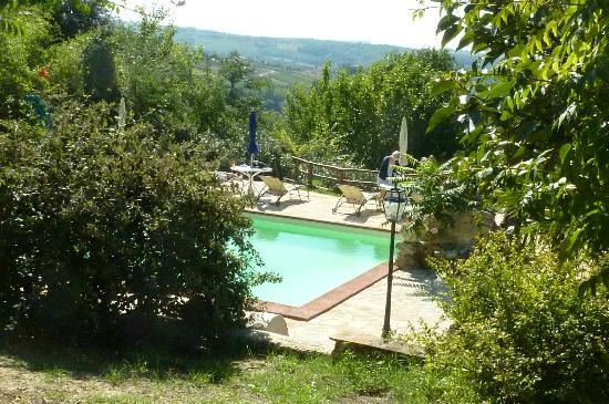 Agriturismo Casale dei Frontini: Lovely pool with great view at Todi