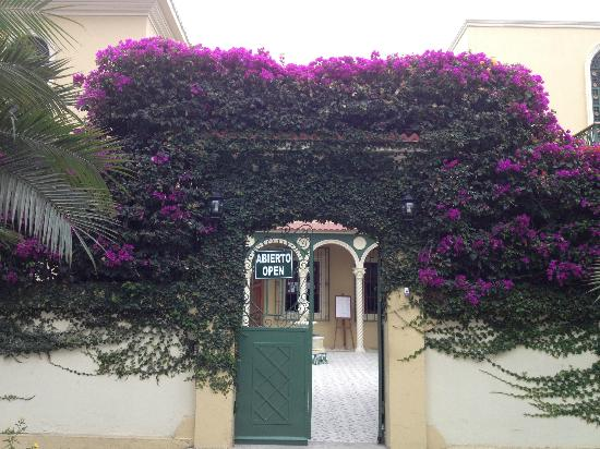 Hotel Amira in Salinas, Ecuador: Flowers in bloom everywhere