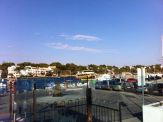 Hostal Playa Mondrago: Puerto Potro