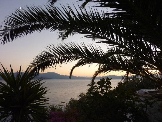 Pounda Paou: Palm tree silhouette in sunset