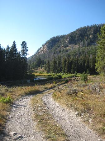 Flat Creek Ranch: The bumpy road