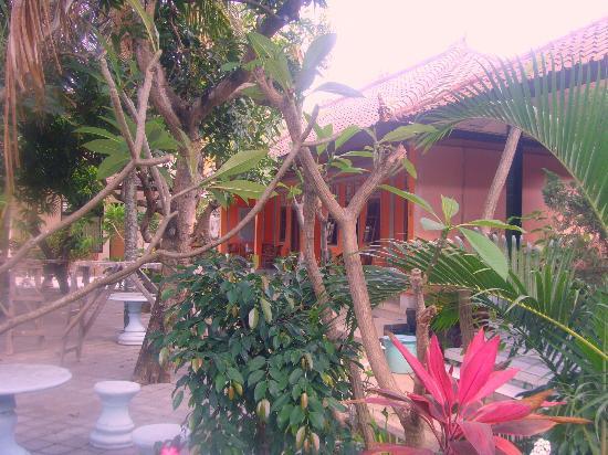 Senen Beach Inn: le jardin
