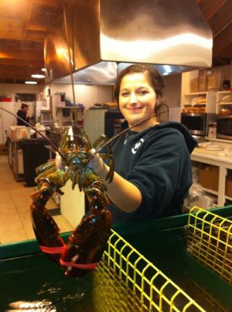 Thurston's Lobster Pound: Huge Lobster!