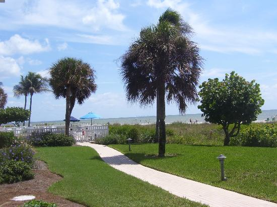 Ocean's Reach Condominiums: Lovely grounds