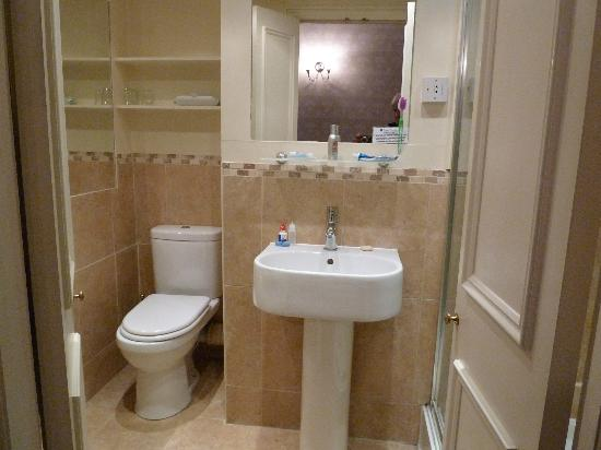Lime Tree Hotel: Bathroom (shower is to the right)