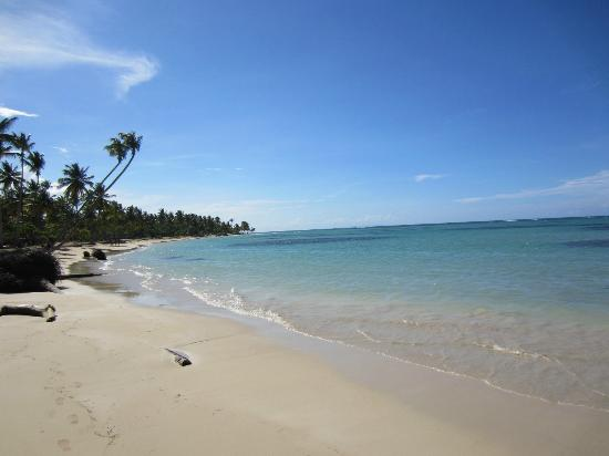 Grand Bahia Principe El Portillo: Fantastic beach