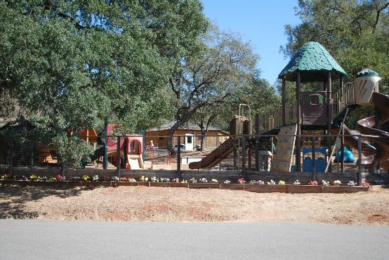 Placerville KOA: playground