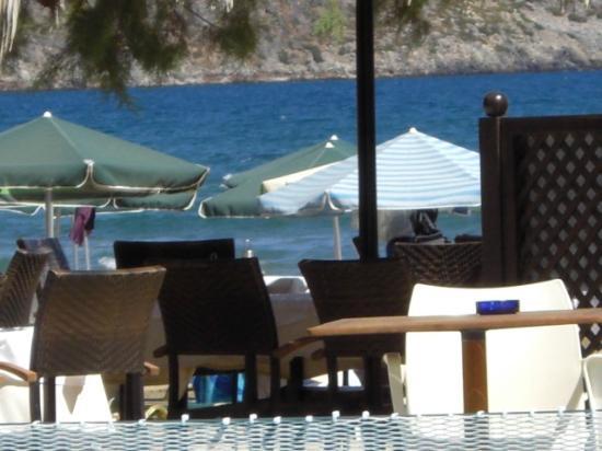 Amalthia Beach Resort: The Restaurant