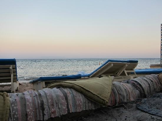 El Primo Hotel Dahab: Private beach