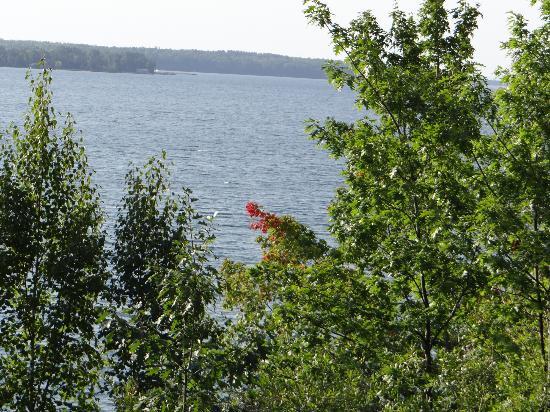 Winfield Inn: great lake view 