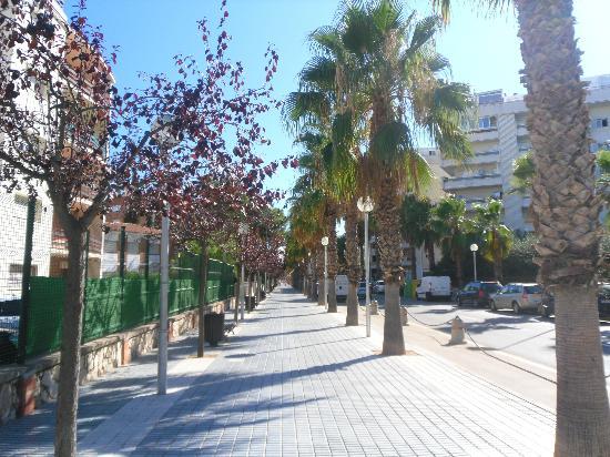 Road outside hotel