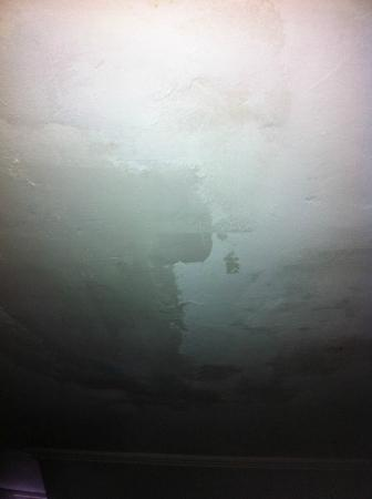 The Surry Inn: Manchas de moho en el cielo sobre la cama / Never attended to mold stains on ceiling above bed
