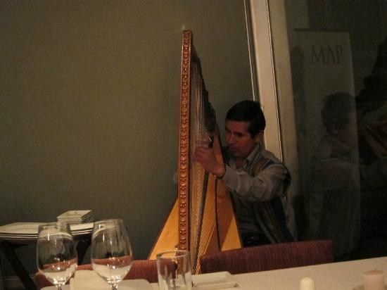 MAP Cafe: A wonderful harpist provided the entertainment that evening