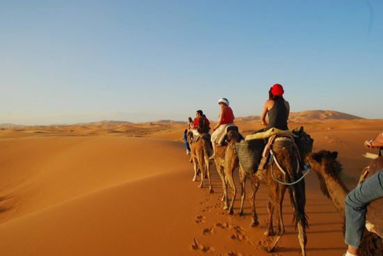 Camel Excursions Morocco - Day Tours