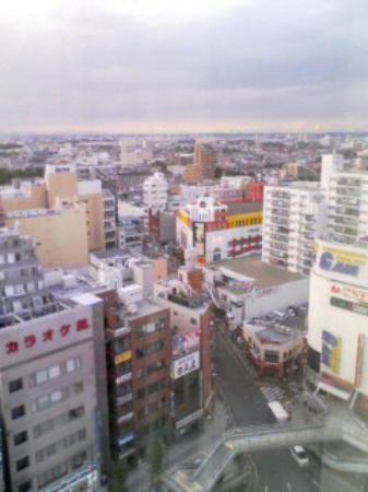 Odakyu Hotel Century Sagami-Ono : 窓からの景色