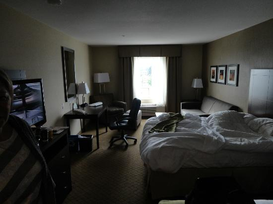 Holiday Inn Suites Kamloops: Two queens