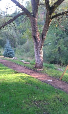 Kohl's Ranch Lodge: Creek path