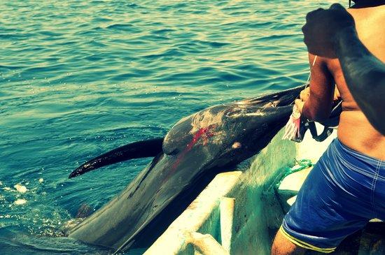 Puerto Escondido, México: Una pesca ejemplar
