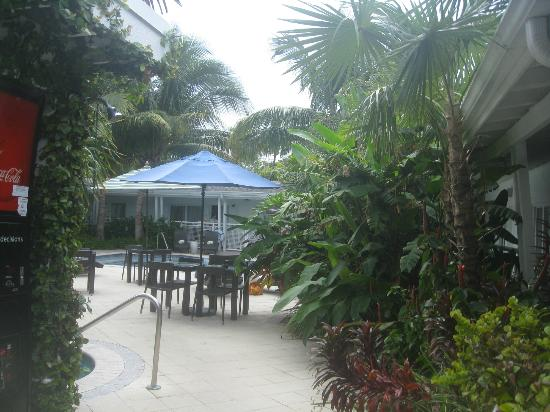 Orchid Key Inn: the pool area - view from our doorway