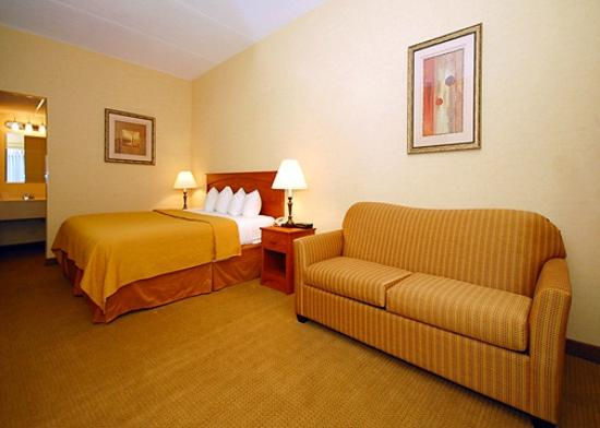 Quality Hotel & Suites At the Falls: One King Bed - Junior Suite