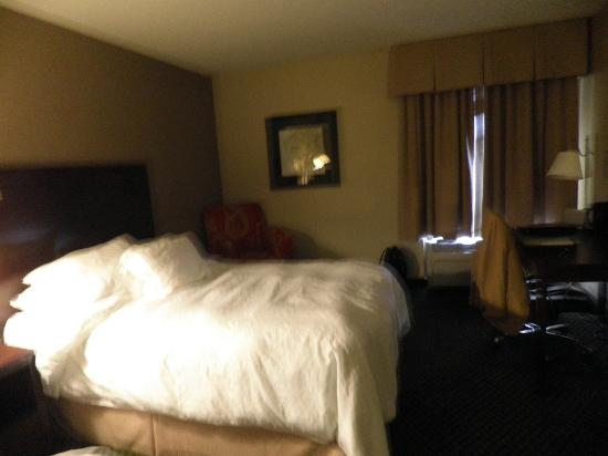 Hampton Inn and Suites Chicago Lincolnshire: Room