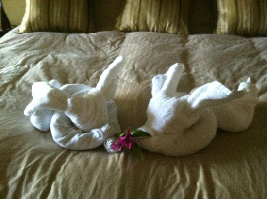 Pacifico Colonial Condominiums: Towel art-bunnies