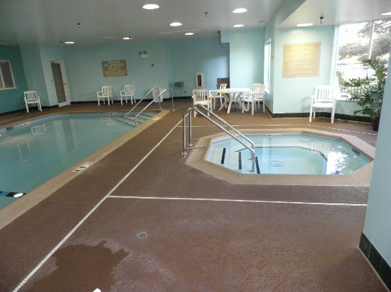 Hampton Inn and Suites Chicago/Lincolnshire: Hot Tub