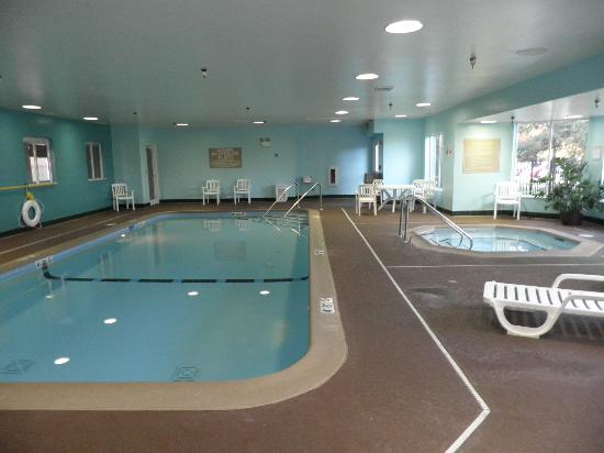 Hampton Inn and Suites Chicago Lincolnshire: Pool