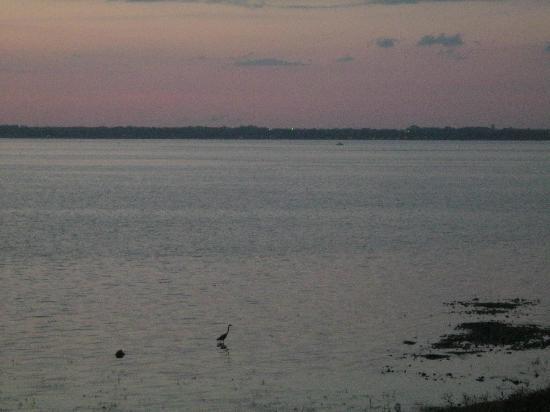 Manoir D'Youville: sunset