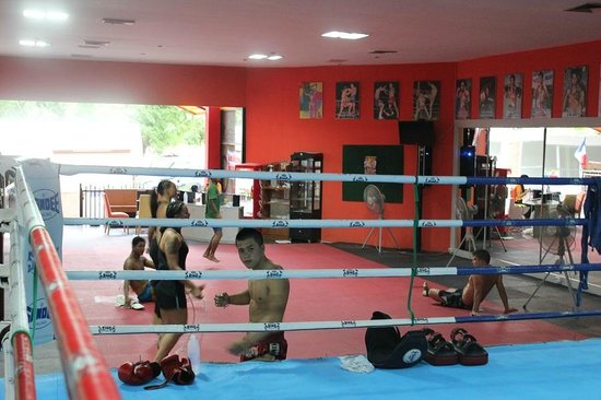 ‪Patong Stadium Muay Thai Gym‬