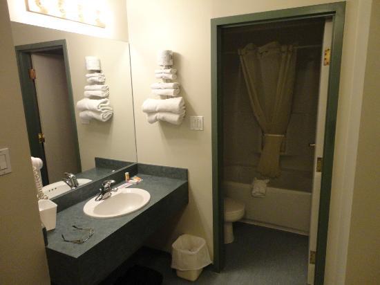 Econo Lodge & Suites: Bathroom