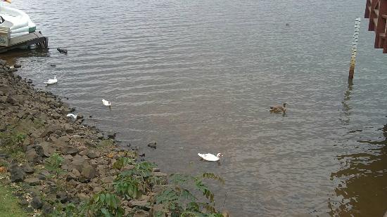 Uberlândia, MG: Um pouco do lago...