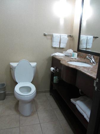 埃爾克頓南紐瓦克 UD 區快捷假日套房飯店照片