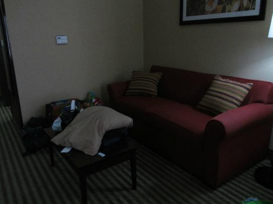 Holiday Inn Express & Suites Elkton - Newark S. - UD Area: sitting area/ sleeper sofa