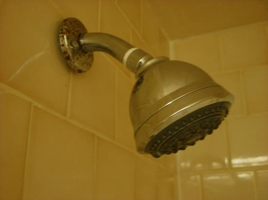 Bay View Inn: Rusty showerhead