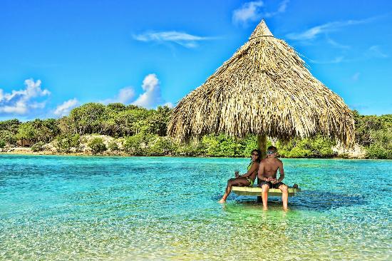 Big Island Retreat Reviews