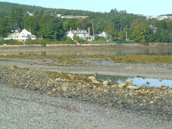 Land Bridge to Bar Island: Cottages along the shore in town as seen from the sand bar