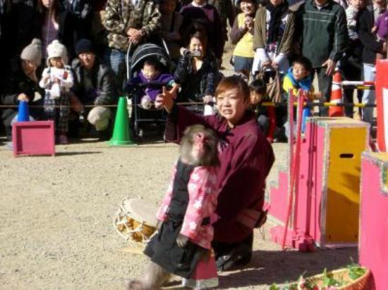 Toyota, Japan: サルの芸