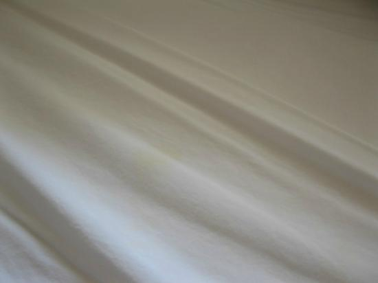 The Wawa Motor Inn : Stained sheets